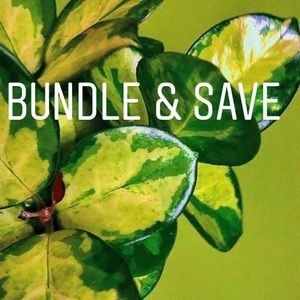 Other - Bundle & Save!!